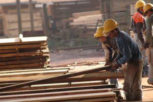 Construcción con madera, competitividad y cambio climático serán ejes del debate en encuentro de PyMEs foresto-industriales en Entre Ríos