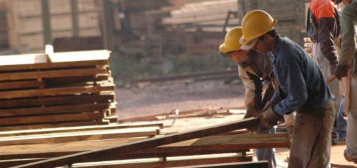 """""""Del aserradero a la casa"""", la recomendación en la industria de la madera a los trabajadores ante la emergencia sanitaria en Misiones por dengue y coronavirus"""