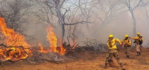 Afirman que los incendios en el Chaco paraguayo ya están controlados, aunque siguen siendo graves