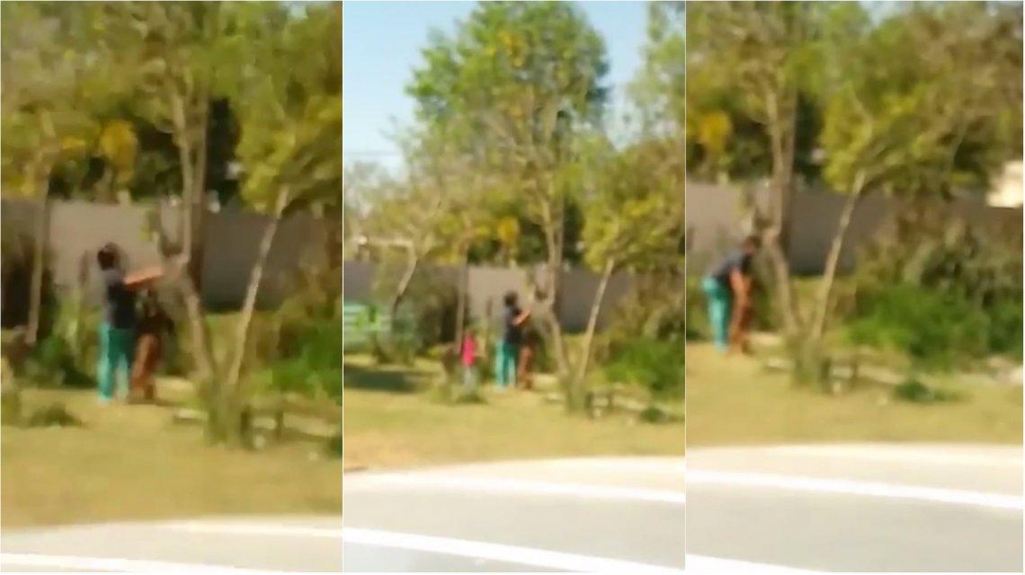 Horror en Santa Fe: una mujer apuñaló y dejó desangrar a un perro