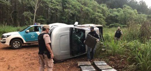 """Operativo """"Drako"""": secuestraron más de 500 kilos de marihuana en Misiones"""