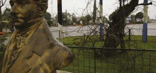 Clonan el árbol Sarandí de Belgrano y lo plantan en San José