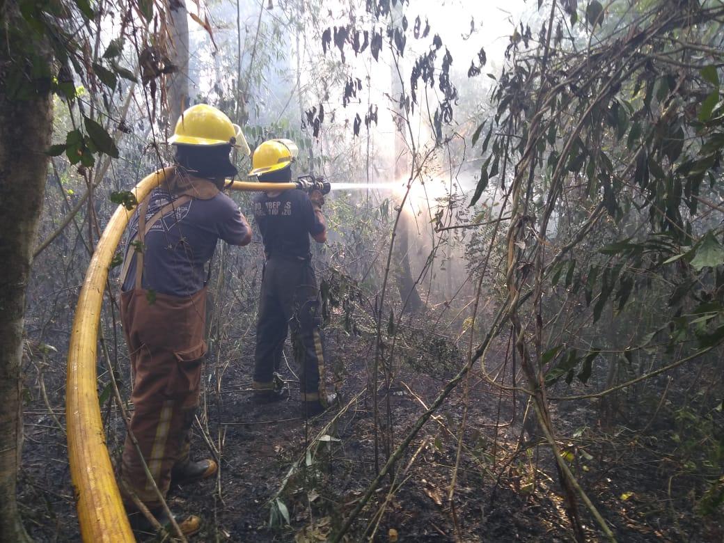 Ecología multó con $363 mil a infractor que inició incendio que afectó a una comunidad guaraní en Iguazú