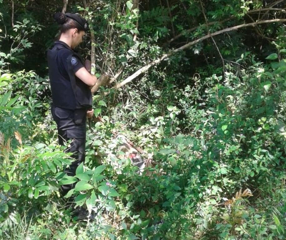 La Policía halló droga oculta en el monte en Candelaria dispuesta para distribución