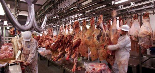 Cinco nuevos frigoríficos argentinos podrán exportar carne a Estados Unidos