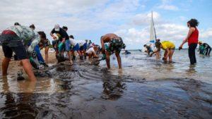 Petrobras afirmó que el petróleo que contamina las aguas de Brasil son de tres campos de Venezuela y generó nueva polémica entre países latinoamericanos