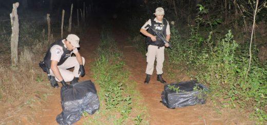 Prefectura decomisó marihuana en Paso de la Patria y Puerto Rico