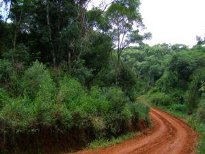 Misiones avanzará en la creación de una Secretaría de Estado de Cambio Climático