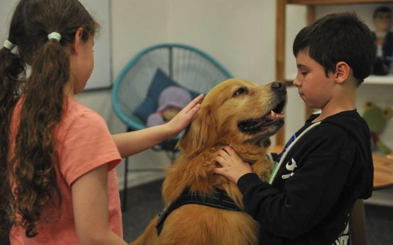 Titán, el perro que acompaña a niños a declarar