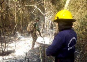 Ecología informó que fueron controlados los focos de incendio en las 2000 hectáreas de Iguazú y Parque Provincial Salto Encantado