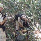 Con un megaoperativo, Prefectura decomisó un cargamento de más de una tonelada de marihuana en Santa Ana