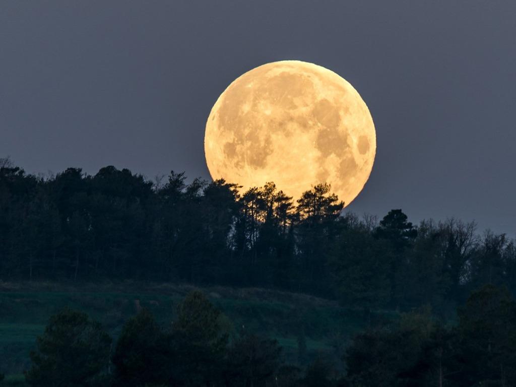 Cómo influyen las fases de la luna en nuestro comportamiento ...