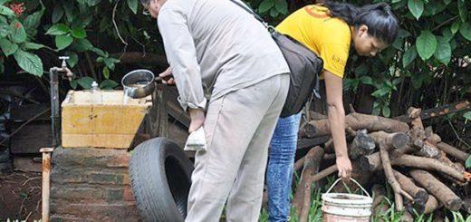 Prevención del dengue: el municipio de Posadas reúne 24 toneladas de cacharros por día