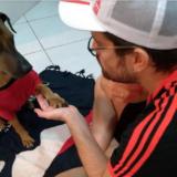 Murió Pancho, el coyote al que confundieron con un perro
