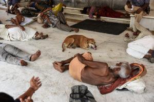 El calentamiento global aumentaría las enfermedades de desnutrición debido a los efectos de la exposición al calor