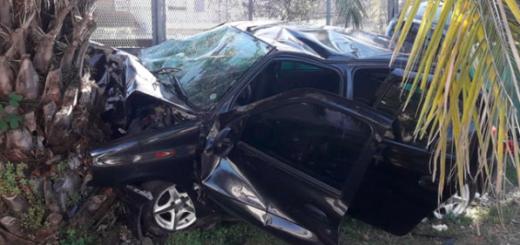 Buenos Aires: esquivaron una alcantarilla destapada, pero chocaron contra una palmera. Cuatro muertos