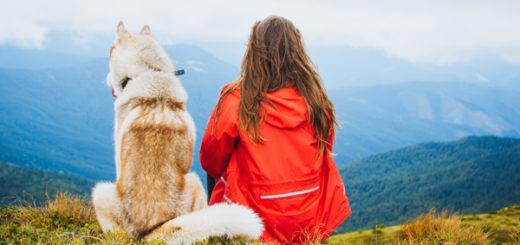 Cada vez más argentinos eligen el destino de sus vacaciones dependiendo de  si pueden o no llevar a sus mascotas