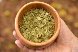La UNaM logró un extracto de yerba mate para jugos antioxidantes