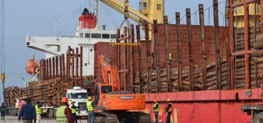 Entre Ríos: al año del inicio de la reactivación portuaria ya operaron 18 cargas de rollos de madera de la región con destino a China