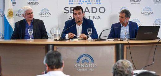 RAMCC: más de 40 municipios de Misiones asumieron compromisos frente al Cambio Climático que presentarán en la COP25 de Madrid