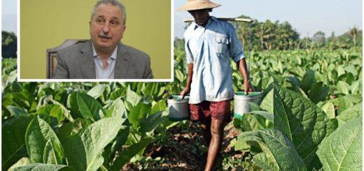 Passalacqua anunció que este viernes depositarán los fondos de la Caja Verde para tabacaleros