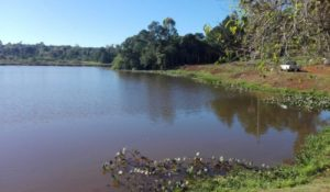 Eldorado: encontraron un cuerpo en el lago Ziegler