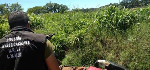 En Leandro N. Alem y en Apóstoles, policías recuperaron motocicletas robadas