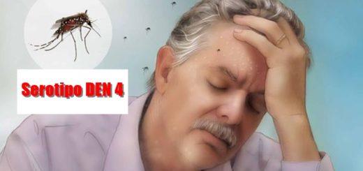 Ante la presencia del serotipo 4 en Misiones, advierten sobre el riesgo para las personas que tuvieron dengue