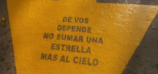 """Estrellas Amarillas en Misiones: """"Todas las acciones que se toman no son suficientes, porque lamentablemente siguen muriendo personas"""""""