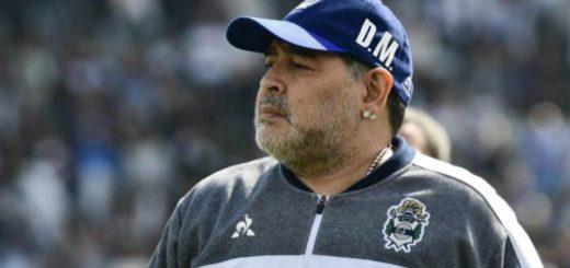 Hay unidad en Gimnasia de La Plata e intentarán convencer a Maradona que se quede