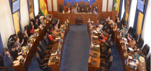 Bolivia: el Senado aprobó llamar a elecciones sin Evo Morales y la ley pasa a Diputados