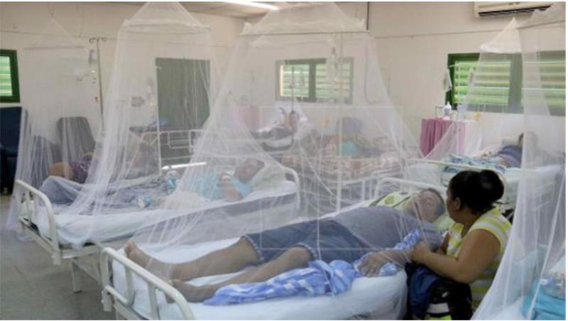 Con 350 casos semanales, Paraguay se prepara para una posible epidemia de dengue
