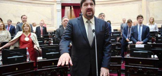 """Tras haber sido electo como vicepresidente primero de la Cámara Alta, Closs afirmó que habrá """"un superbloque peronista"""" en el Senado"""