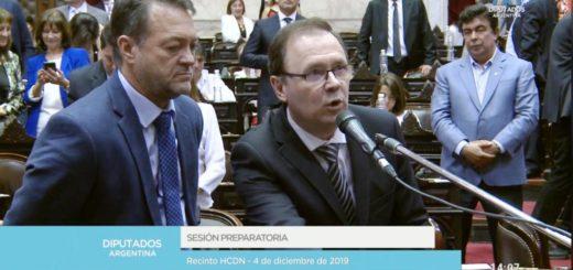 Diputados nacionales electos por Misiones juraron en el Congreso de la Nación