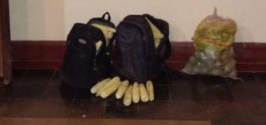 Dos menores demorados por robar choclos y limones en Corpus