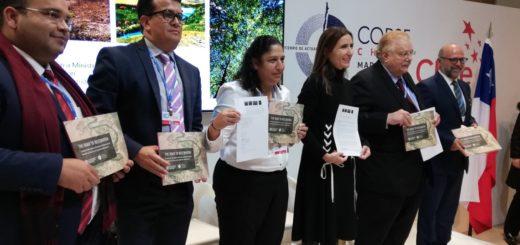 COP25: Argentina entre los países latinoamericanos que se comprometen a restaurar 250 millones de hectáreas al 2050