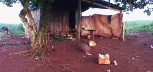 Asesinaron a un peón con puñaladas por la espalda en un mandiocal de Garuhapé