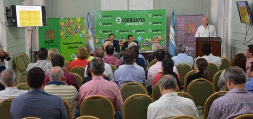 Corrientes: Gobierno y la APEFIC presentaron el primer catálogo de productos madereros para la construcción