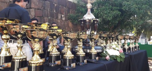 Estudiantina 2019: se realizó la esperada entrega de trofeos en el centro posadeño