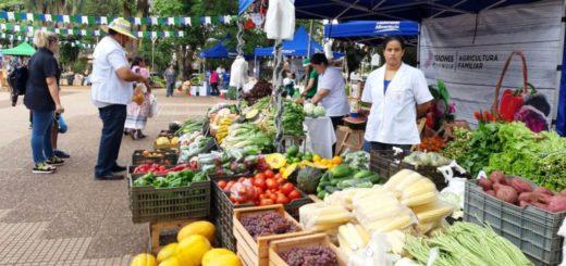 La Soberanía Alimentaria se vive a pleno en la Plaza San Martín de Posadas