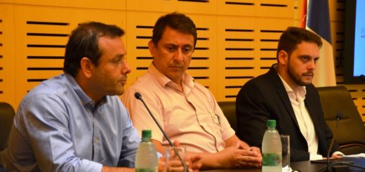 El Gobernador remarcó la importancia de avanzar en la política energética de Misiones