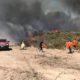 Incendio en una Reserva Ecológica en Buenos Aires: investigan si fue intencional