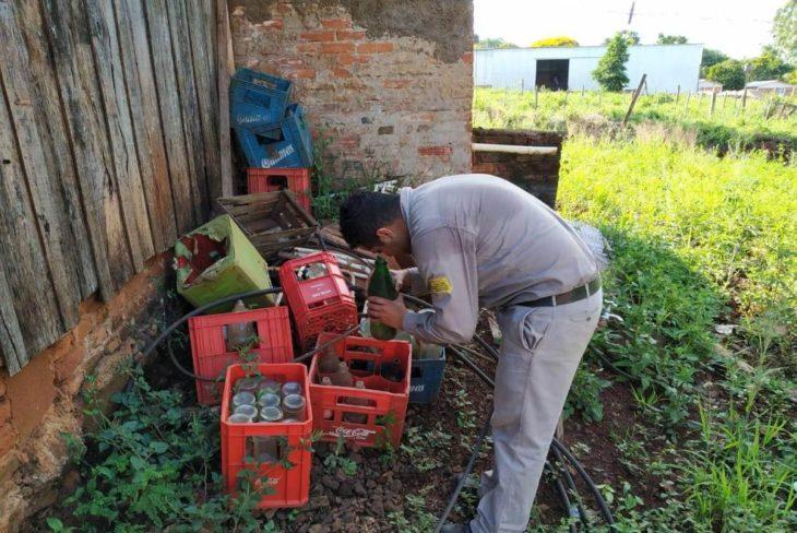 Dengue: Salud Pública activó un fuerte operativo en municipios para combatir criaderos de mosquitos