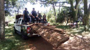 Personal de Ecología incautó un cargamento de madera nativa en San José