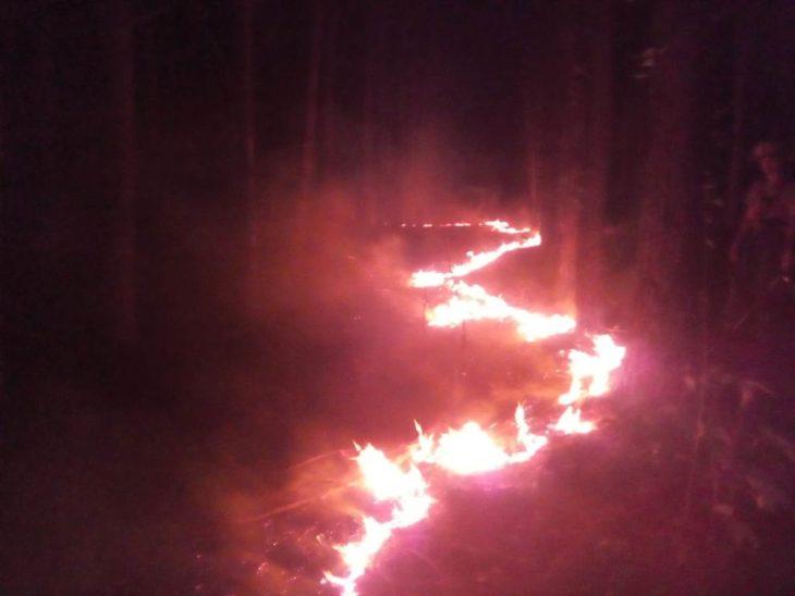 Rige la «alerta máxima extrema» enMisiones por el peligro de incendios