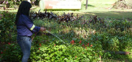 Posadas: realizan trabajos de obras y limpieza en diferentes puntos de la ciudad