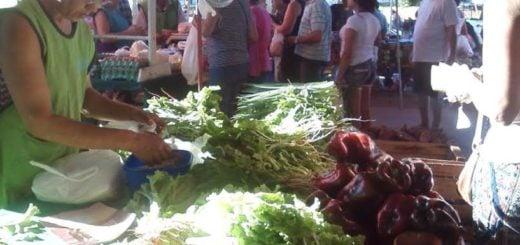Todas las Ferias Francas continúan trabajando durante el verano y el desafío es sumar más producción