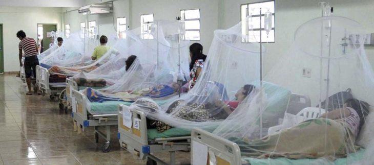 Paraguay: advierten que el «pico máximo» de la epidemia del dengue sería a fines de febrero