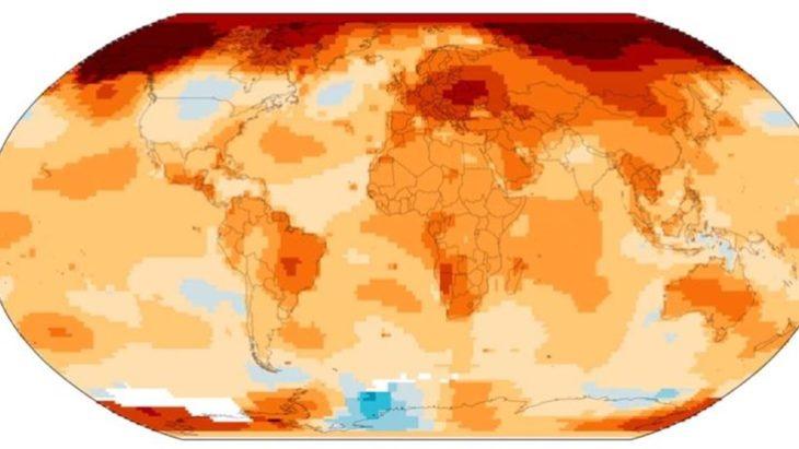 Organización Meteorológica Mundial: 2019 fue el segundo año más cálido registrado