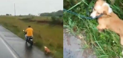 Identifican a motociclista que arrastró a un perro en Misiones